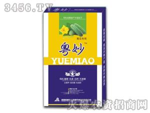 黄瓜专用液肥-粤妙-诺