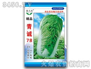 大白菜种子-青诚78F