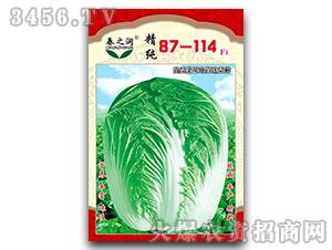 大白菜种子-87-11