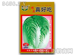 大白菜种子-真好吃-春