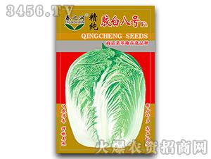 大白菜种子-胶白八号F