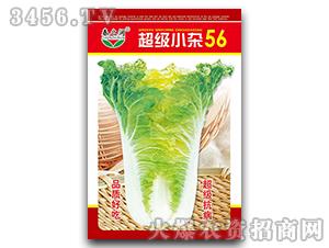 大白菜种子-超级小杂56-春之润