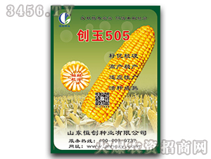 玉米种子-创玉505-恒创种业