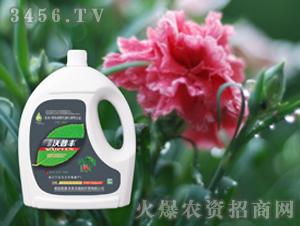 苗木花卉专用氨基松脂菌