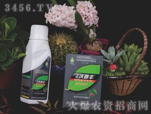苗木花卉专用液肥套装-