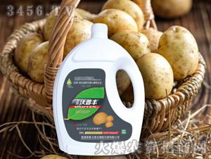 土豆专用氨基松脂菌露母