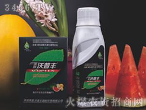 西瓜甜瓜专用液肥套装-