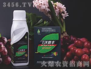 葡萄提子专用液肥套装-