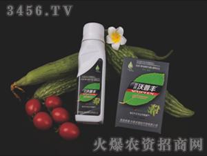 苦瓜丝瓜专用液肥套装-