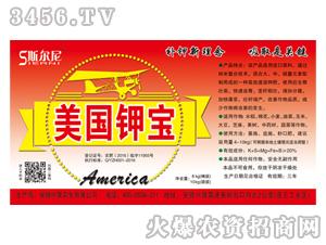 美国钾宝-斯尔尼-中昊