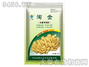 大姜专用型营养剂-淘金-纵横