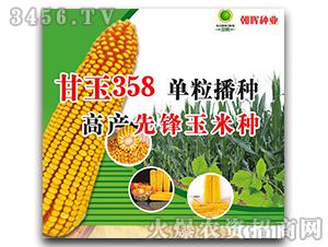 玉米种子-甘玉358-