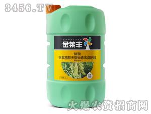 豆类需配含腐植酸大量元素水溶肥壶5L-碳能-金莱丰