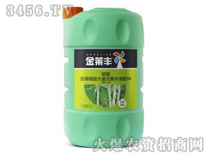 豆角需配含腐植酸大量元素水溶肥壶5L-碳能-金莱丰