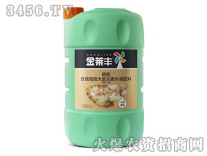大姜需配含腐植酸大量元素水溶肥壶5L-碳能-金莱丰