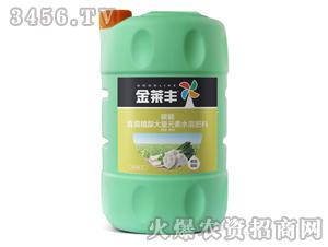 葱蒜需配含腐植酸大量元素水溶肥壶5L-碳能-金莱丰