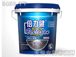 含腐殖酸水溶肥料-倍力健-寿光今朝