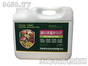 微生物菌剂水溶肥-鼎盛天宝冲施肥-博文农业