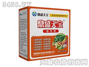 块茎专用营养调节剂-鼎盛天宝-博文农业