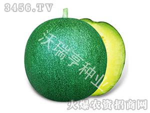甜瓜种子-芳香雅州蜜-沃瑞亨