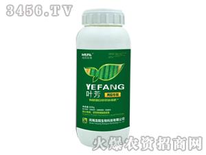 黄瓜专用液肥-叶芳-浩