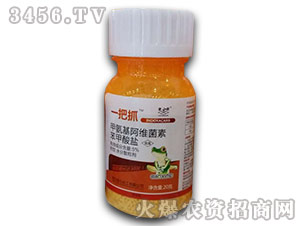 甲氨基阿维菌素苯甲酸盐-一把抓-金石化工