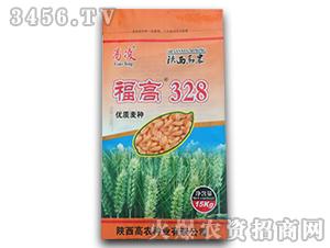 小麦种子-福高328-鑫博农业