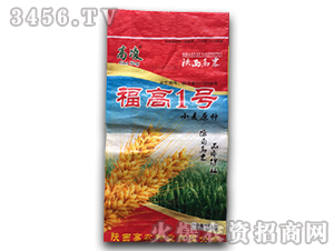 小麦原种-福高1号-鑫博农业