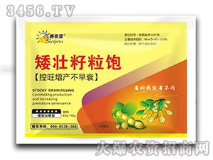 植物生长调节剂-矮壮籽粒饱-赛普露