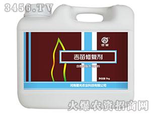 含氨基酸水溶肥料(壶)-吉苗修复剂-署光农业