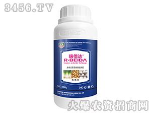 葱姜蒜专用高能全营养植物流体肥(瓶装)-瑞倍达