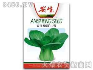 蔬菜种子-安生绿彩二号-康田慧农