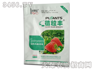 草莓专用肥料-植粒丰-汉思
