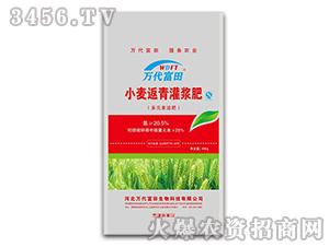小麦返青灌浆肥-万代富田