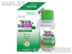 草莓专用纯天然螺旋藻营养液肥-康丰莱-康宝盛
