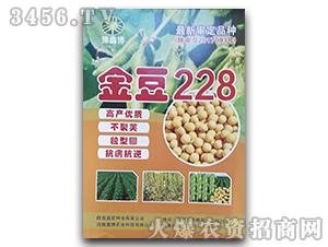 金豆228-大豆种子-豫鑫博
