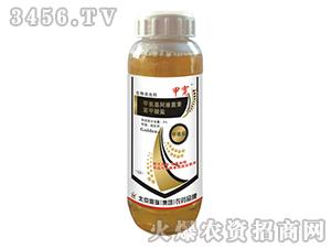 3%甲氨基阿维菌素苯甲酸盐微乳剂-甲宽-鼎瑞化工