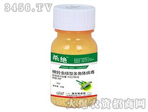 棉铃虫核型多角体病毒-