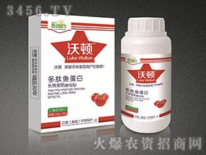 多肽鱼蛋白长效液肥(番茄专用)-贝恩作物