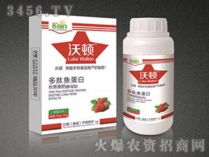 多肽鱼蛋白长效液肥(草莓专用)-贝恩作物