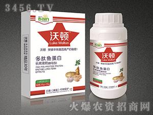 多肽鱼蛋白长效液肥(块根茎类专用)-贝恩作物