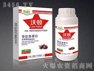 多肽鱼蛋白长效液肥(马蹄专用)-沃顿-贝恩作物