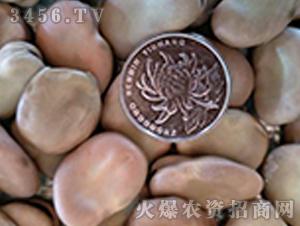 青禾杂粮-日本大白皮蚕