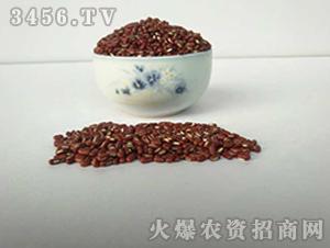 青禾杂粮-赤小豆