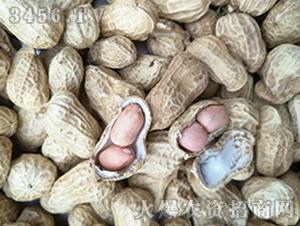 青禾杂粮-白沙花生