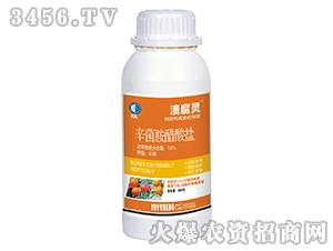 1.8%辛菌胺醋酸盐水剂-溃腐灵-柯依之绿