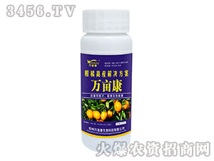 柑橘高产解决方案-万亩康