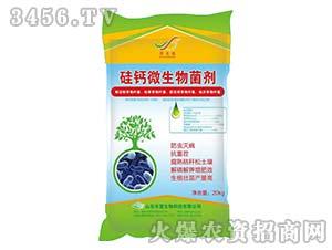 硅钙微生物菌剂-丰富生物