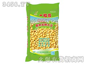 腐熟发酵大豆-一粒豆-丰富生物