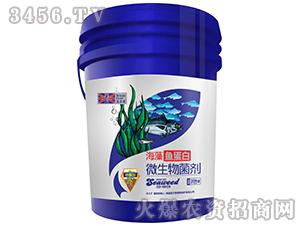 养根型微生物菌剂-海藻鱼蛋白-英尔果